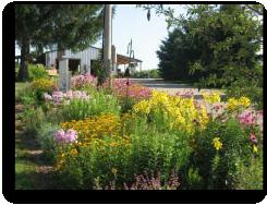 Murphy's Gardens - Galena, IL
